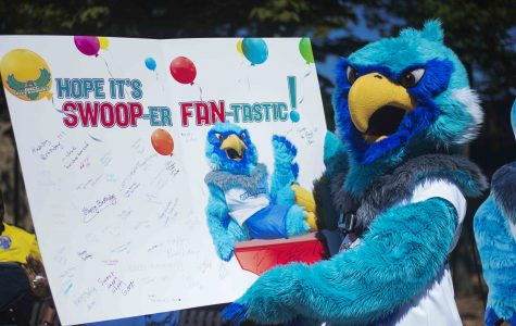 Swoop turns 1 at student fair