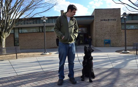 Dogs at school help students