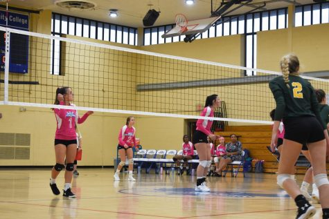 AACC Women's V-ball finishes 2019 season