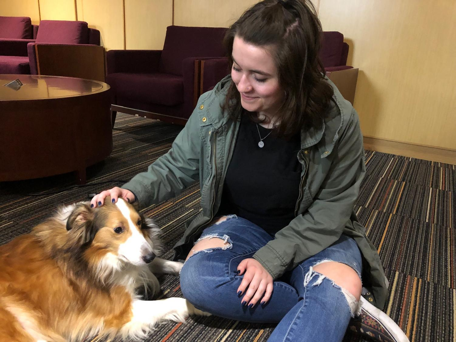 Third-year nursing student Ciara Winters pets therapy dog Taz at Fidos for Finals.